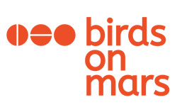 birds on mars consultants azure strategie data analytics